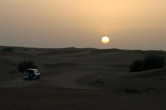 Desert Safari Standard(Evening)